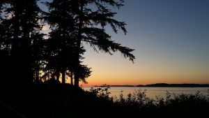 orcas island is a very special place and an amazing place to live and work