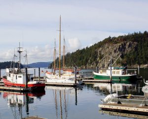 the amazing pace of life on orcas island in the san juan islands