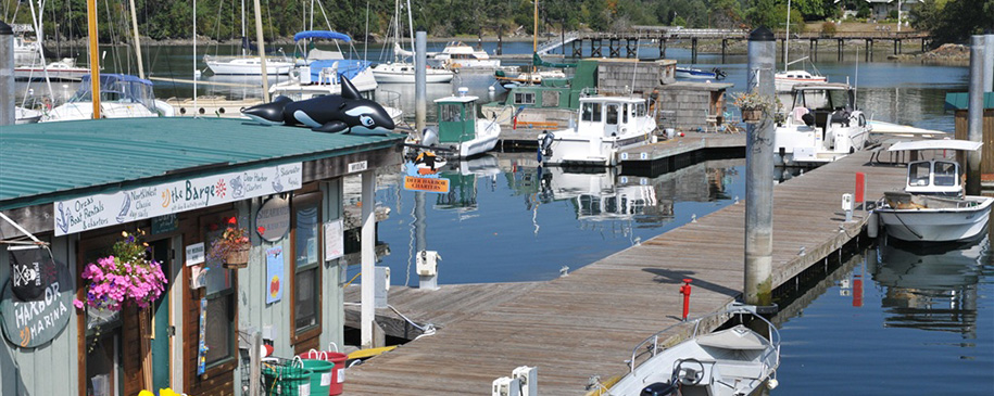 Deer Harbor Marina Orcas Island Salish Sea